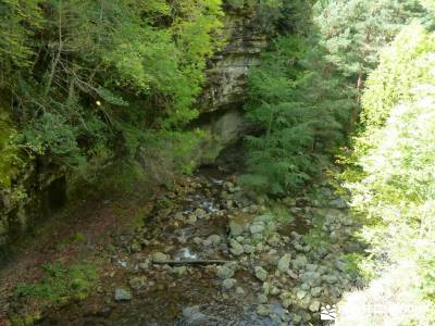 Parque Natural Sierra de Cebollera (Los Cameros) - Acebal Garagüeta;material necesario para senderi